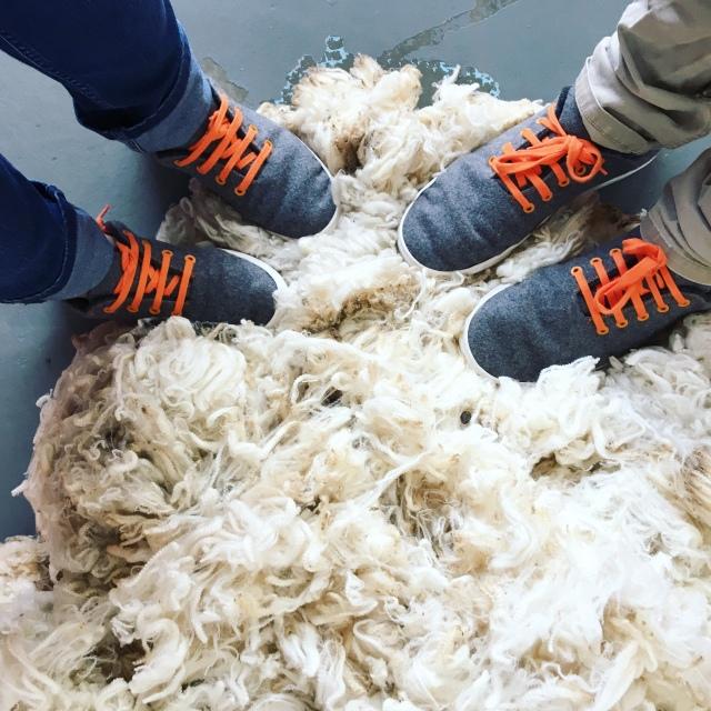 Baabuks Grey Orange Wool Sneakers